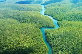 Rios Voadores e Floresta Amazônica influenciam nas chuvas de boa parte do  território nacional - Portal Embrapa